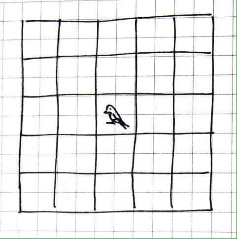 Птичка в клетке на бумаге