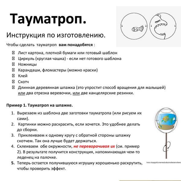 taumatrop